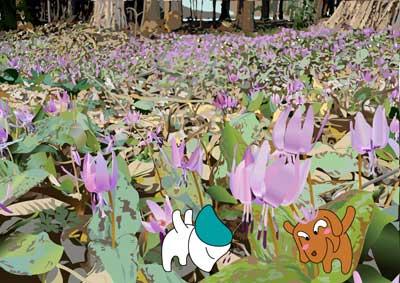 只見の春:カタクリ