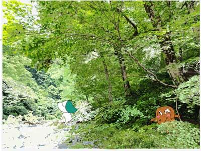 只見の夏:水辺林