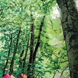ポストカードイラスト「恵みの森 <この森がぼくらを育てる>」