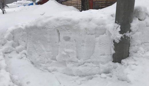 ミニ雪像 2019 ポケモンの作り方 その1